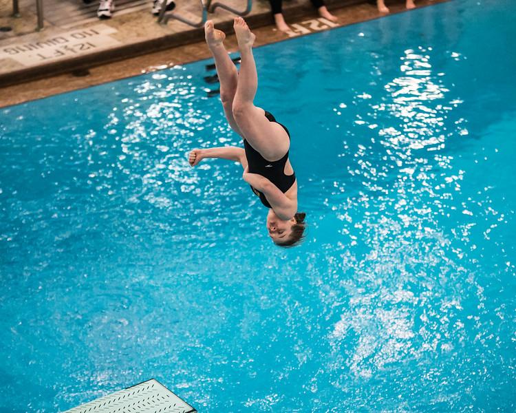 D1 Diving-12.jpg