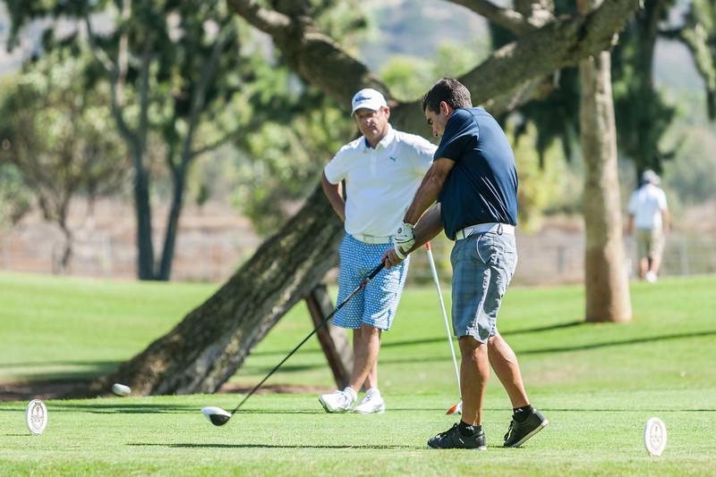 Golf310.jpg