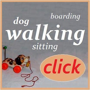 dog walking contact page