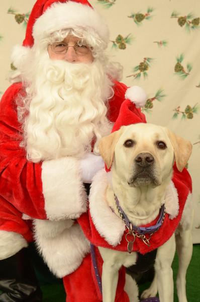 Animal Advocates Santa Photos 2016