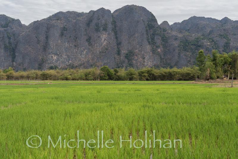 Phu Hin Bun National Park, Laos