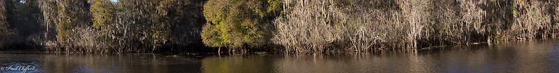 Images from folder Lettuce Lake