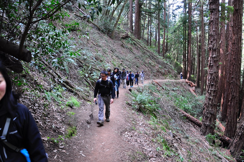 2018-02-14 IGSM_Muir_Woods_Hike_Pwang-6.jpg