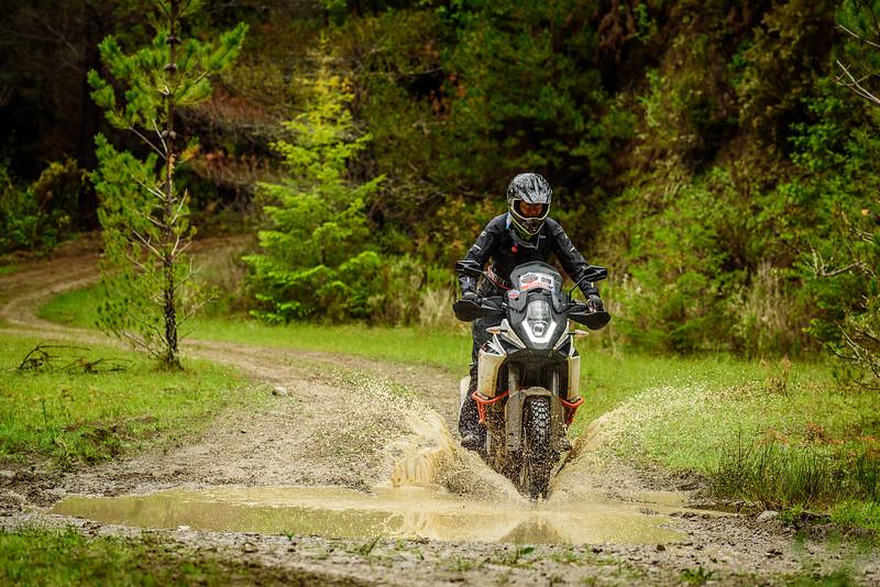 2019 KTM New Zealand Adventure Rallye (363).jpg