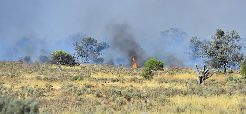Grass fire by SA/Vic border