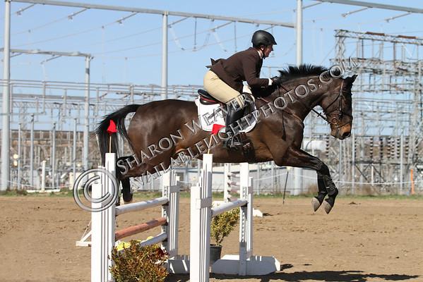 1-2-3 Unidentified Horses & Riders