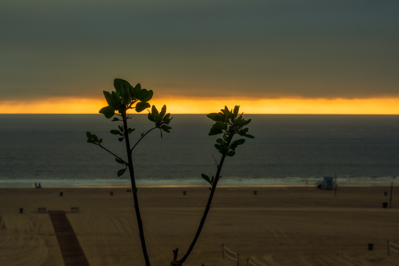 December 13 - A pre-sunset sunset over the Pacific.jpg