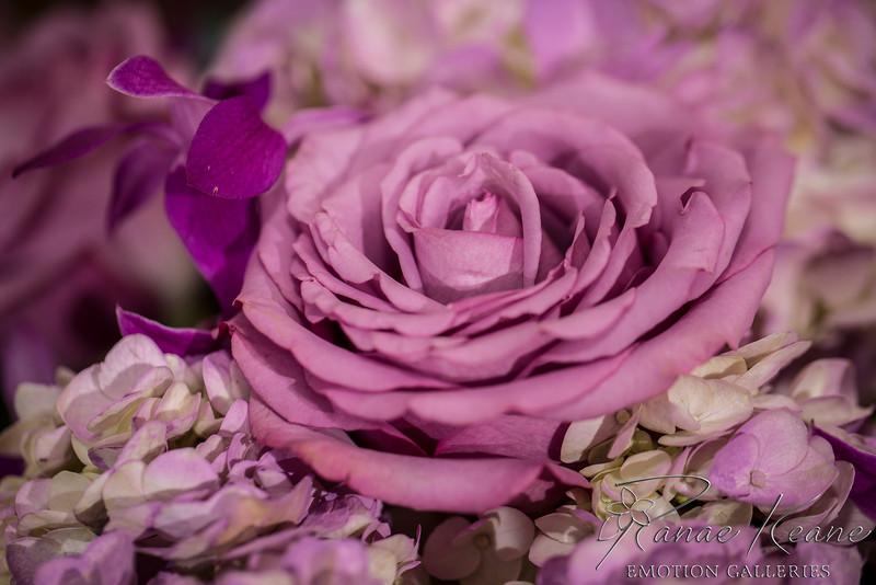142__Hawaii_Destination_Wedding_Photographer_Ranae_Keane_www.EmotionGalleries.com__141018.jpg