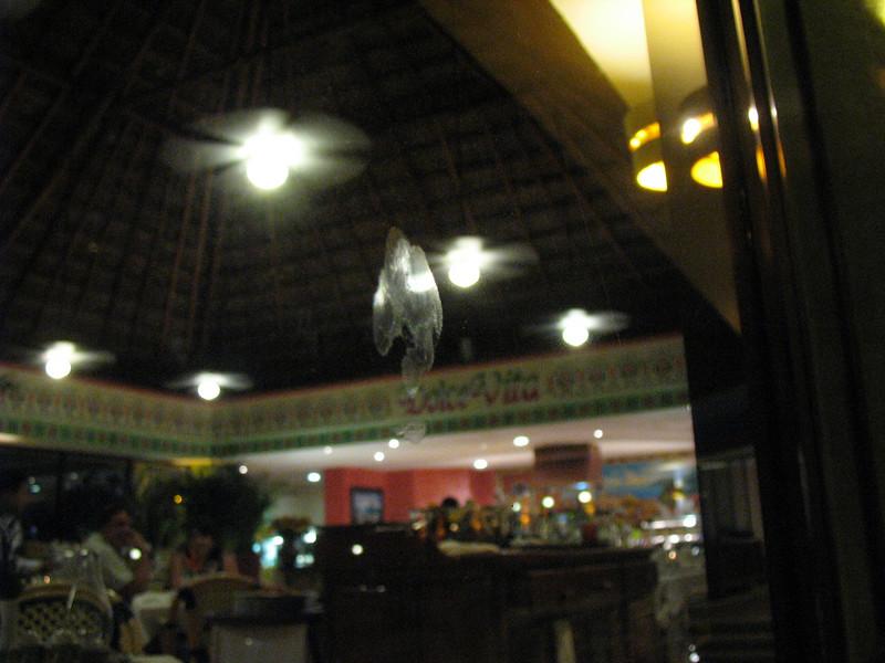 Mexico - 0752.jpg