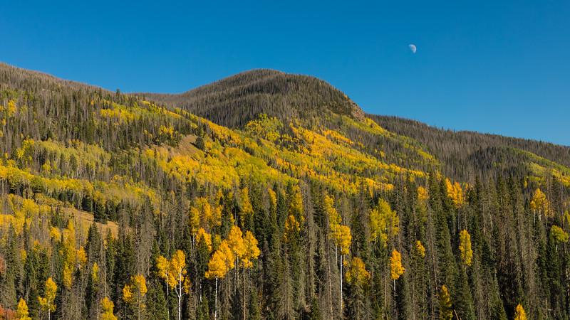 Colorado19_5D4-1559.jpg