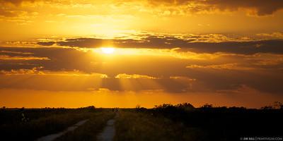 Sunset over Everglades