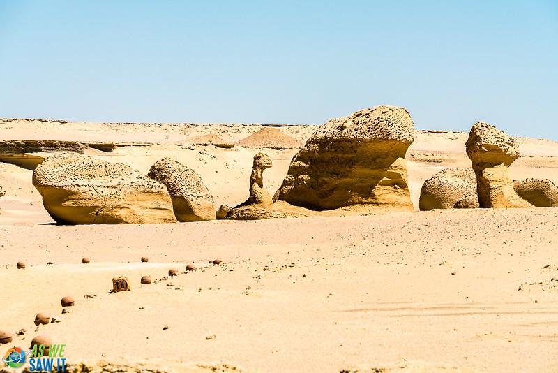 Wadi-El-Hitaan-02417.jpg
