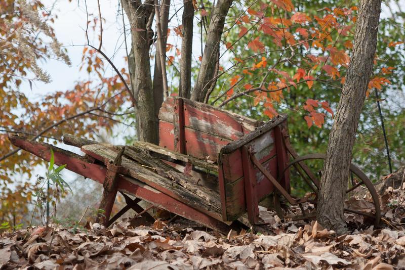 20111030-2011-10-3014-52-2611436.jpg