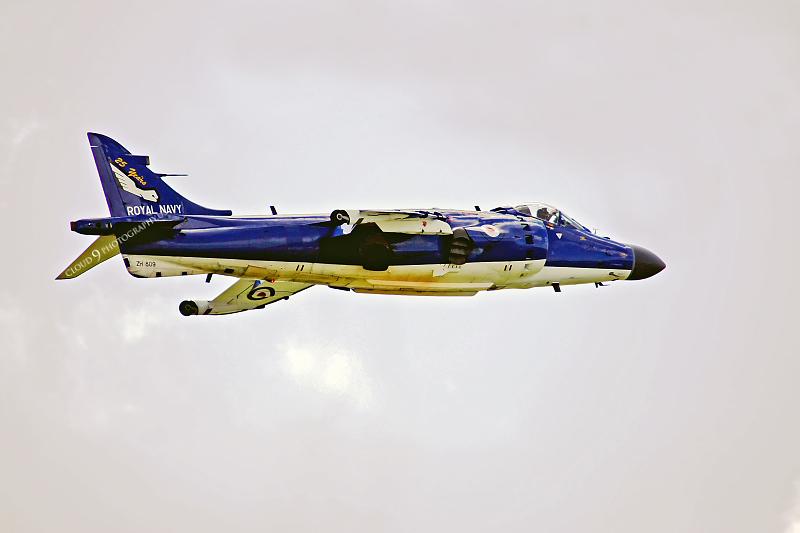 BAE Harrier 00026 BAE Harrier British Royal Navy ZH809 by Paul Ridgway .JPG
