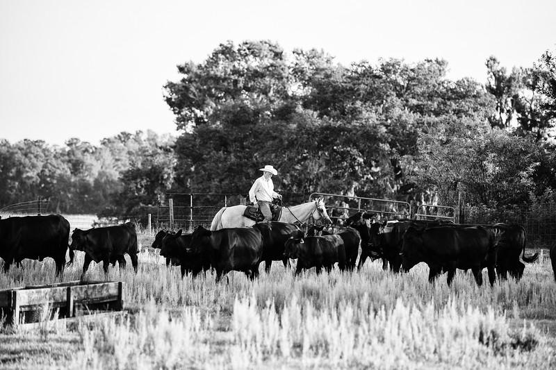 Breely Barthle Ranch B&W 3 (14 of 46).jpg