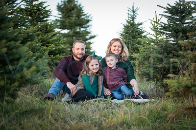 Griffiths Family Holiday Session