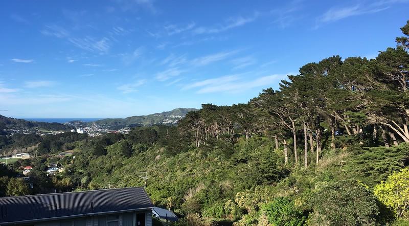 Green Belt views