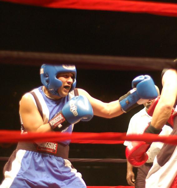 boxer4.JPG