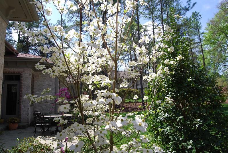 April_2008_001.jpg