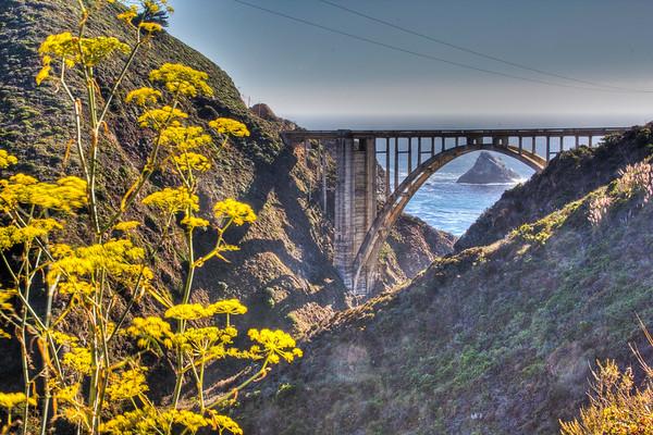Big Sur and Surrounding Area (California)