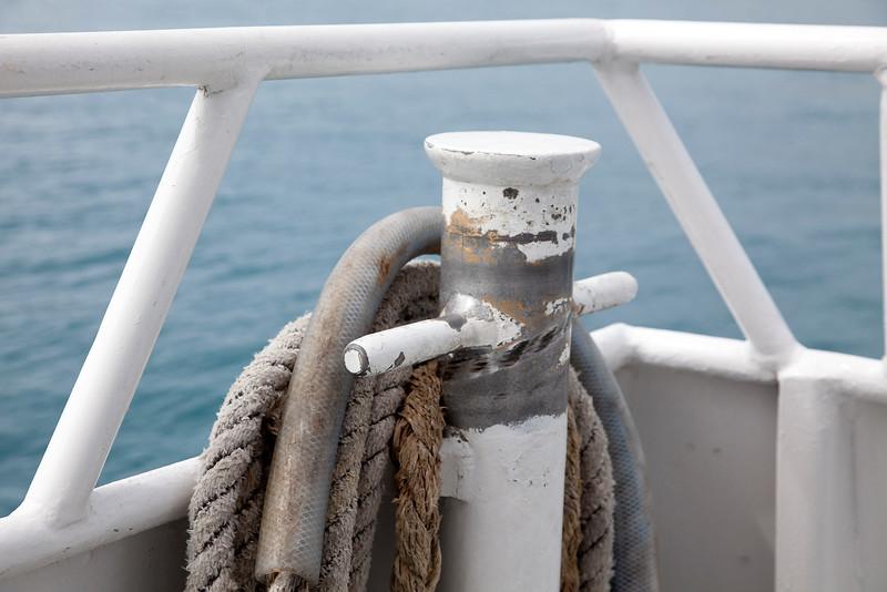 2011-cruise-136.jpg