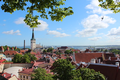 Penn Alumni Travel: The Baltic Sea 2015