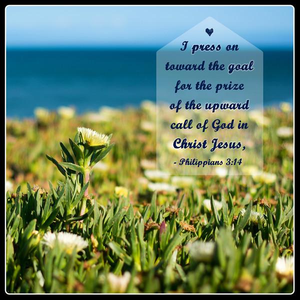 Philippians3-14_5-20-14.jpg