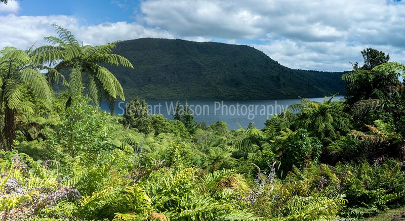 The Green Lake Rotorua