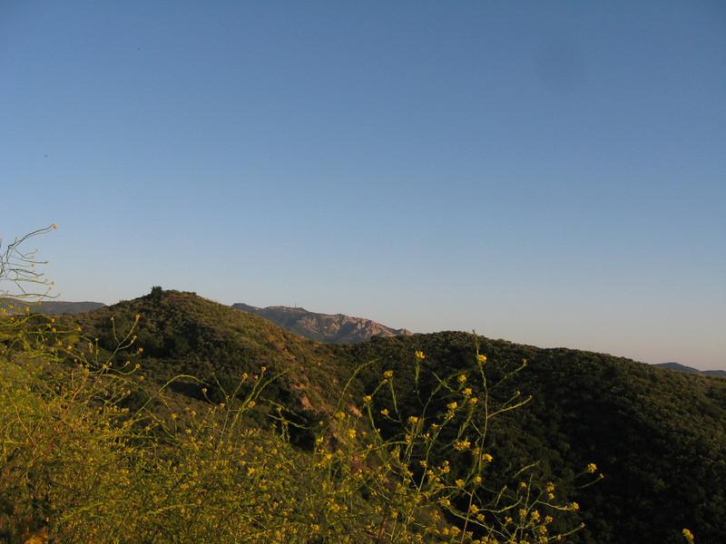 20080417015-New Millenium Trail, trailwork.JPG