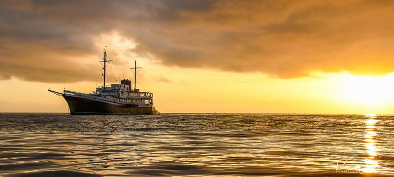 2018 Lobos Island-43.jpg
