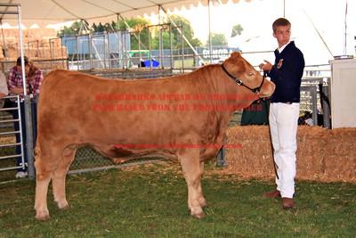 2011 LHVCF Beef
