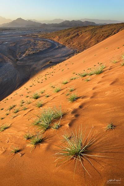 Oman Desert (1).jpg