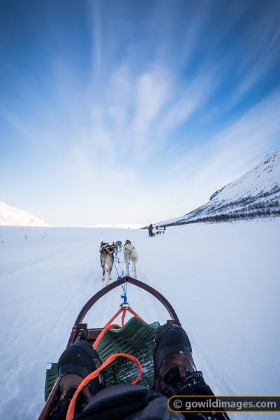 Arctic Sledding