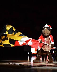 Maryland Terps vs Stony Brook