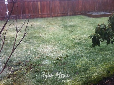 Snow 2.16.11