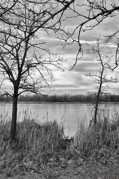 Narrow Lake Path