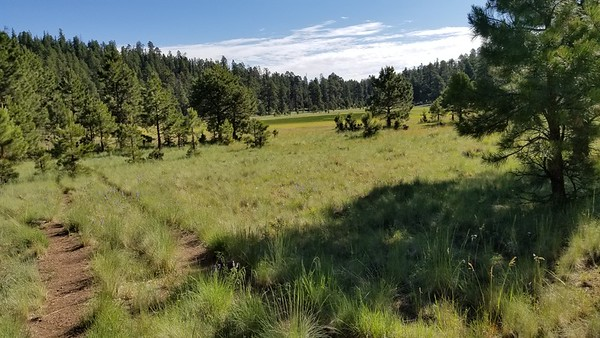 2019-07-13 Jedi Rocky Ridge Loop