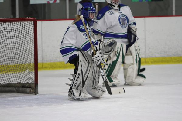 2012/2013 Wildcat Girls Hockey