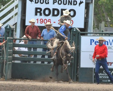 Saddle Bronc (Section 3)