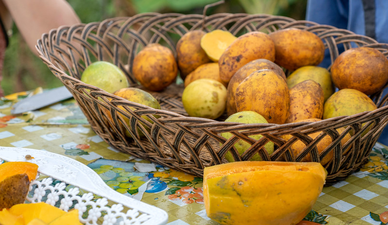 Saint-Lucia-Tropical-Fruits-02.jpg