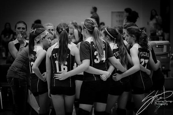 DSMS Volleyball 2014