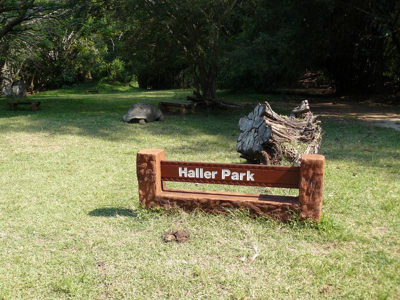 Haller Park-13