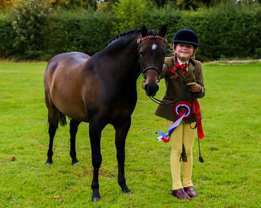 Sparket Equestrian Showing Show - October 2017