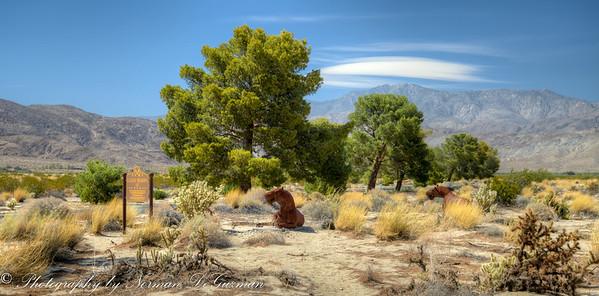 Borrego Springs and Salton Sea