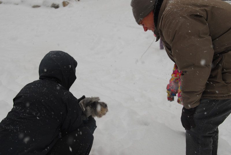 [20100103] 1st 2010 Snow in Beijing (67).JPG