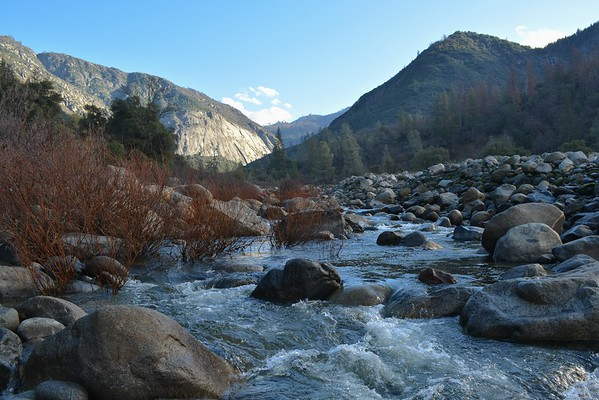 Springtime morning on the Merced River (El Portal)