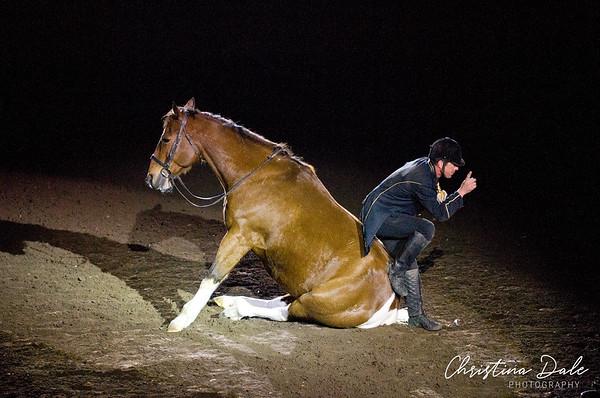 2012 World Horse Expo