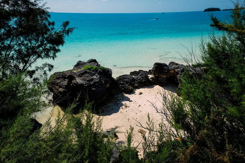 Bermuda-17.jpg