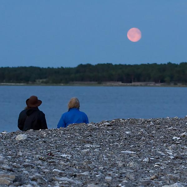 Gotland 20110608_0061.jpg