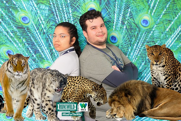 WCS Run for the Wild Prints